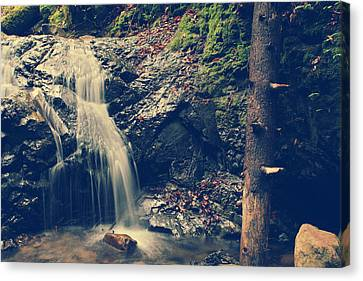 Water Flowing Canvas Print - I'm Not Giving Up On You by Laurie Search