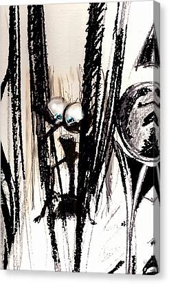 I'm Sitting Here Amazed Canvas Print by Marcello Cicchini