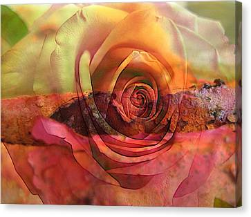 Eternal Flow Canvas Print - Immersed by Shirley Sirois