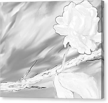Immortal Love Canvas Print by Nicla Rossini