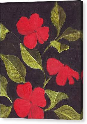 Impatiens Canvas Print by Mary Adam