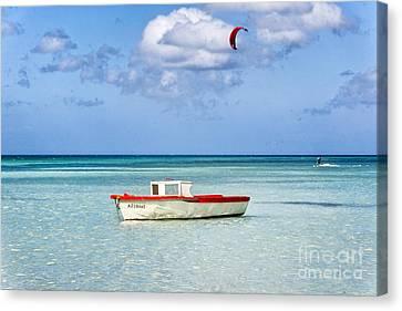 Impression Of Aruba  Canvas Print by George Oze