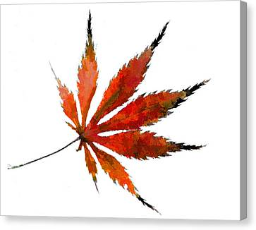 Impressionist Japanese Maple Leaf Canvas Print