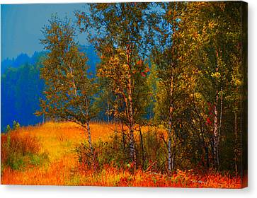Impressionistic Autumn Canvas Print by Jenny Rainbow