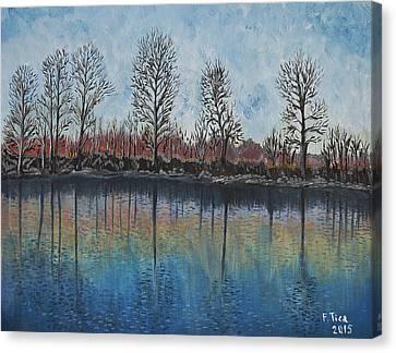 Impressions  Canvas Print by Felicia Tica