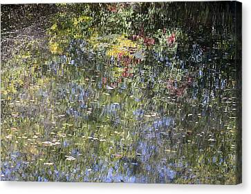 Canvas Print featuring the photograph Impressions Of Autumn by Andrew Pacheco