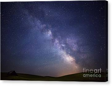 In A Blink Of An Eye Canvas Print by Beve Brown-Clark Photography