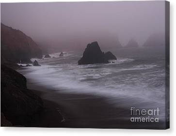 In A Fog Canvas Print by Suzanne Luft