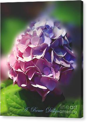 In All Their Glory Canvas Print