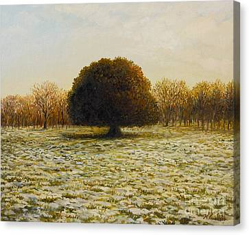 In Anticipation Of The Spring Canvas Print by Kiril Stanchev