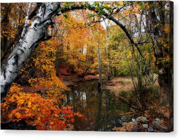 In Dreams Of Autumn Canvas Print by Kay Novy