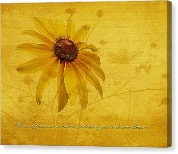 In Every Flower See A Miracle Canvas Print by Mother Nature