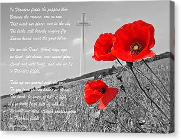 In Flanders Fields Canvas Print by Gill Billington