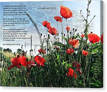 In Flanders Fields Canvas Print by Nick Eagles