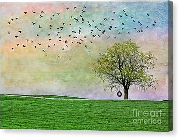 In Green Pastures Canvas Print by Jak of Arts Photography