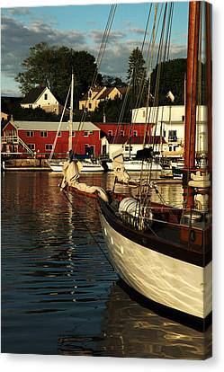 In Harbor Canvas Print by Karol Livote