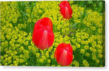 In Harmony With Nature 1 Canvas Print by Teo SITCHET-KANDA