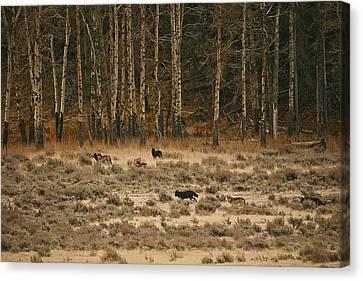 Canvas Print featuring the photograph In Memory Of The Druids by Gary Hall