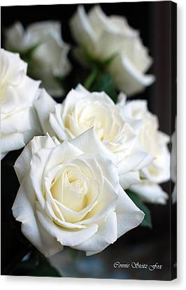 In My Dreams - White Roses Canvas Print by Connie Fox