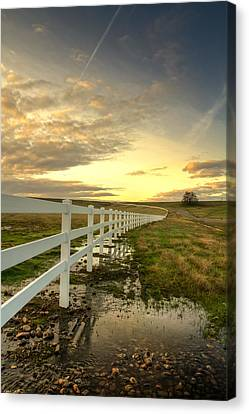 In Plain View Canvas Print by Randy Wood