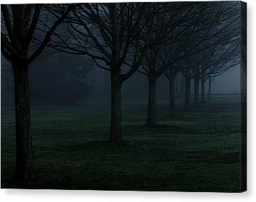 In Rows Canvas Print by Andrea Galiffi