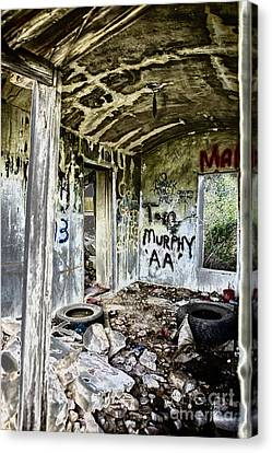 In Ruins Canvas Print by Erika Weber