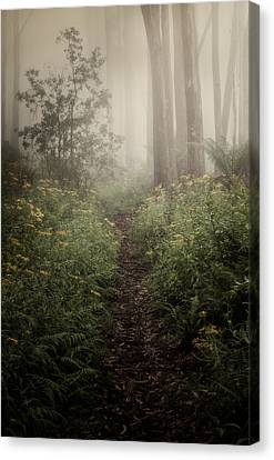 Haze Canvas Print - In Silence by Amy Weiss