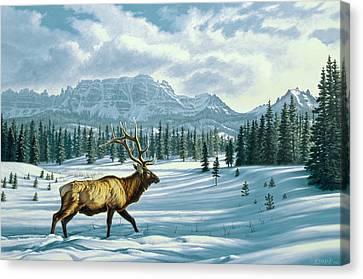 In The Absarokas - Elk Canvas Print by Paul Krapf