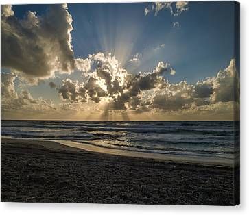 Canvas Print featuring the photograph In The Beginning by Meir Ezrachi
