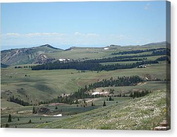 In The Bighorn Mountains Canvas Print