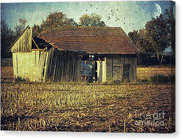 In The Country Canvas Print by Jutta Maria Pusl