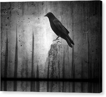 In The Dark Canvas Print