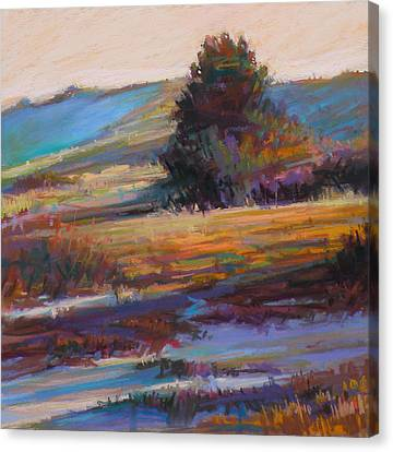 In The Dunes Canvas Print by Ed Chesnovitch