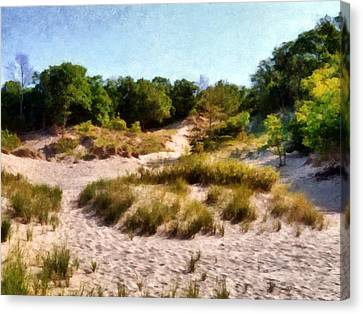 In The Dunes Canvas Print by Michelle Calkins