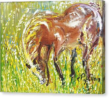 In The Field Canvas Print by Evelina Popilian