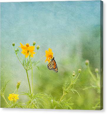Spring Time Canvas Print - In The Garden - Monarch Butterfly by Kim Hojnacki