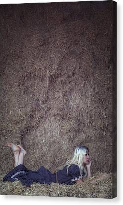 In The Hay Canvas Print by Joana Kruse