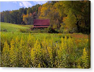In The Heart Of Autumn Canvas Print by Debra and Dave Vanderlaan