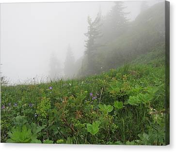 Canvas Print featuring the photograph In The Mist - 1 by Pema Hou