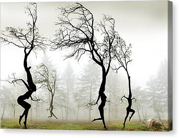Dancing Canvas Print - In The Mist by Igor Zenin