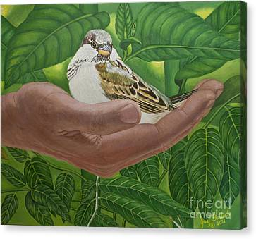 In The Palm Of His Hand Canvas Print