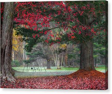In The Park Canvas Print by Bill Wakeley