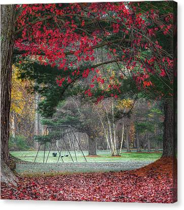 Square Canvas Print - In The Park Square by Bill Wakeley
