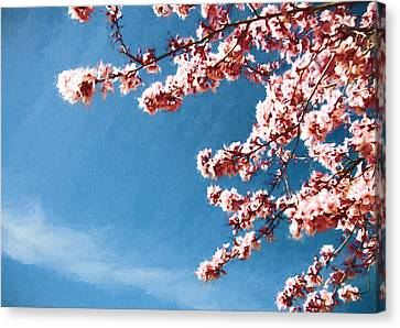 In The Pink Canvas Print by John K Woodruff