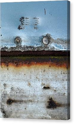 In The Raw Canvas Print by Tom Druin