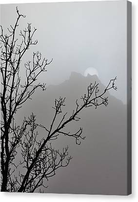 In The Silence Canvas Print