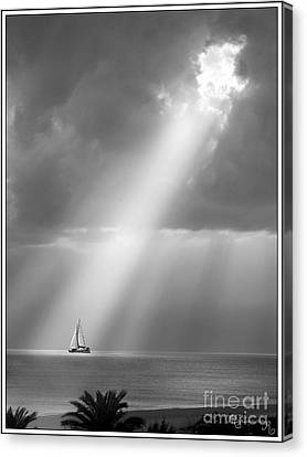 In The Spotlight Canvas Print