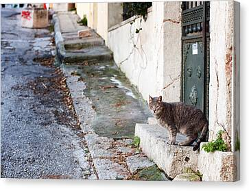 Canvas Print featuring the photograph In The Streets Of Athens by Laura Melis