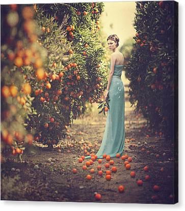 Orange Colors Canvas Print - In The Tangerine Garden by Anka Zhuravleva
