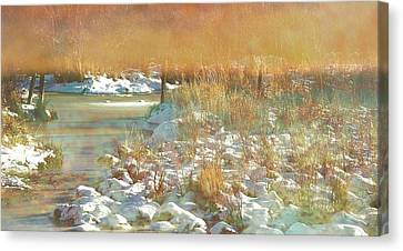 In The Twilight Canvas Print by Shirley Sirois